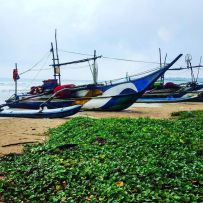 Sri Lanken Fishing Boats
