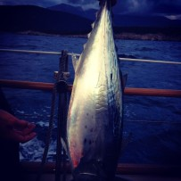 Caught Our Own Tuna